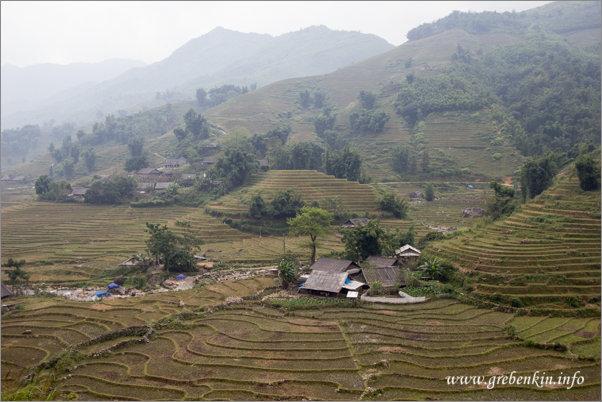 http://grebenkin.info/Trip/OnLine/Vietnam2014/Sapa/IMG_9213.jpg